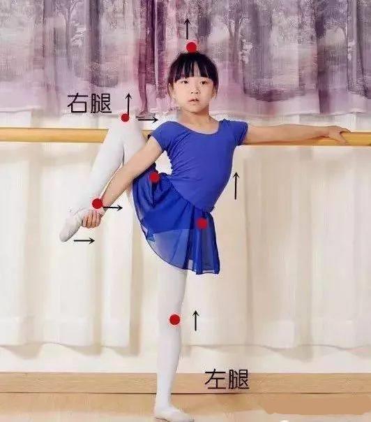 浩然舞蹈教学之「把杆搬旁腿」